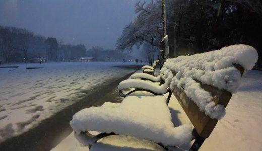 GoPro Hero6 BLACKを使って大雪を撮影してみました